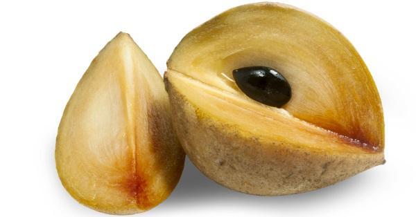 → SAPOTI, majestuosa fruta de árbol, llena de sabor, usos y beneficios.