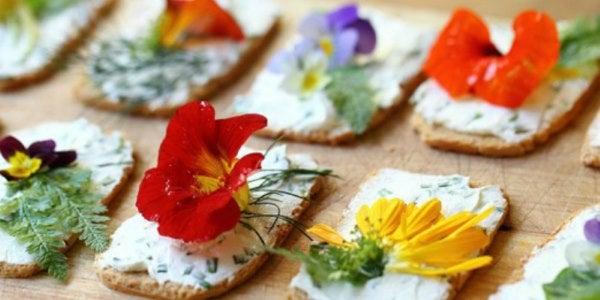 10 flores comestibles y consejos útiles antes de comer