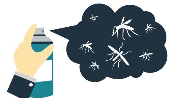 10 remedios caseros para mantener a los insectos lejos de casa