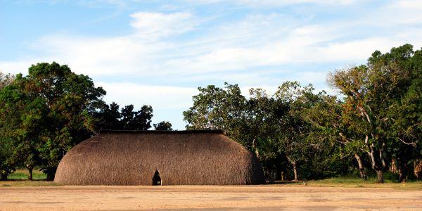 Parque Xingu 3