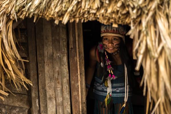 Parque Xingu 2