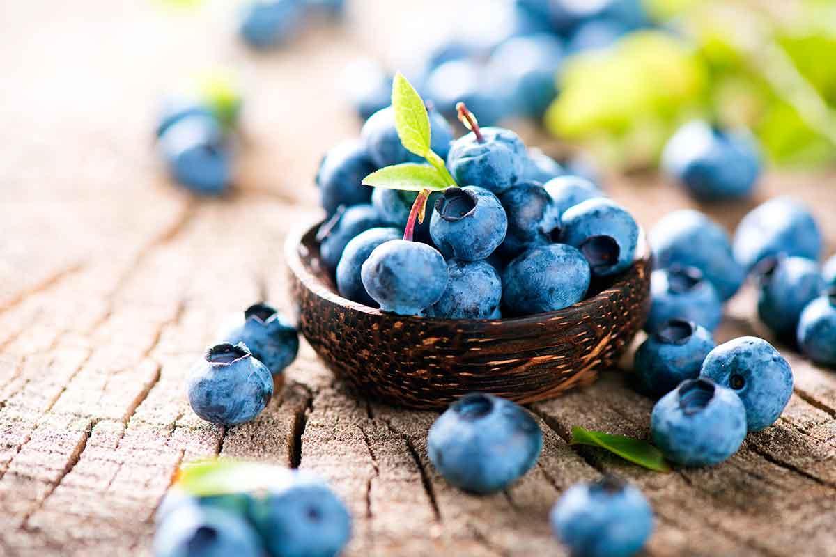 Blueberry → 1001 Propiedades y beneficios para su salud