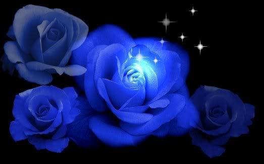 leyenda rosa azul