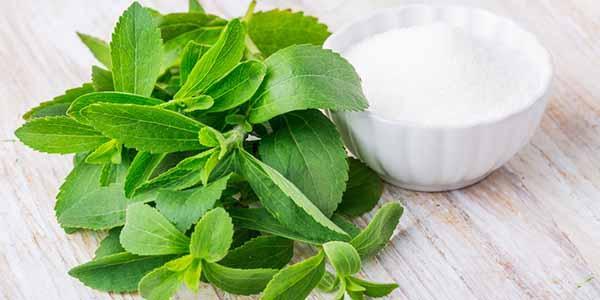Stevia → ¡Toda la verdad sobre este edulcorante natural!