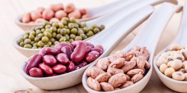 tipos de frijoles beneficios calorías