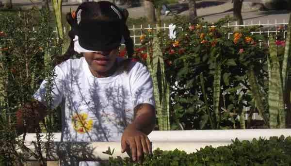 jardín sensorial3