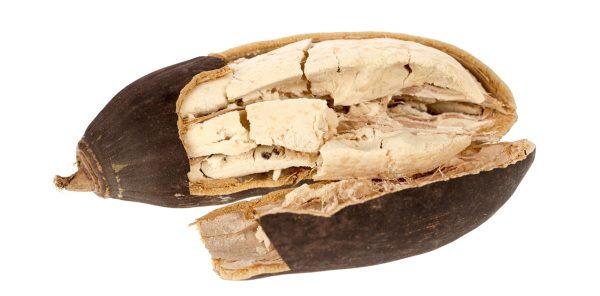 fruta baoba