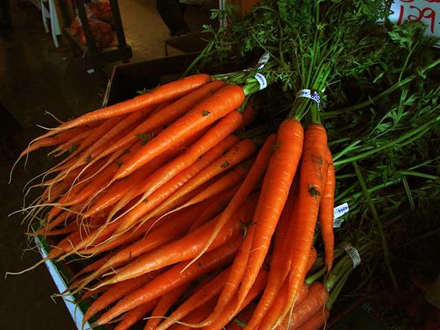 Pasta con ramitas de zanahoria