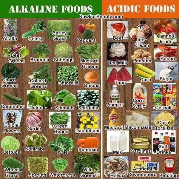 alimentos alcalinos 2