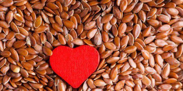 semilla de lino