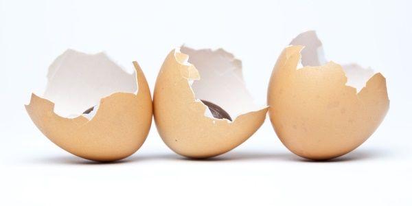 Cómo hacer fertilizante de cáscara de huevo - 2 recetas fáciles