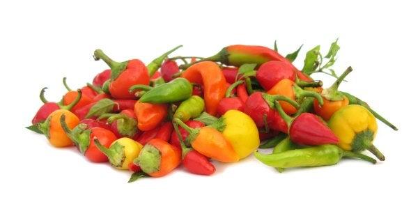 Cómo plantar pimienta. Consejos prácticos, fáciles y completos.