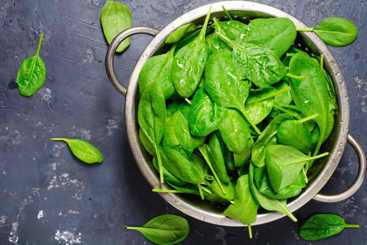 Espinacas: todas las propiedades beneficiosas para tu cuerpo