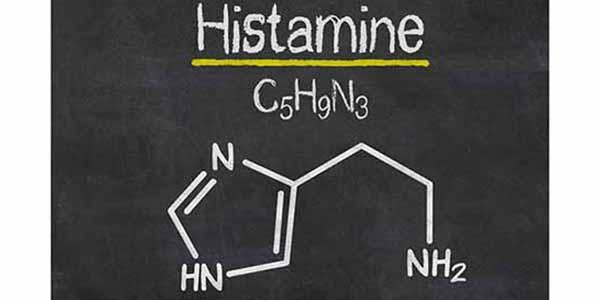 Histamina → Qué es, exceso de síntomas y remedios para la intolerancia