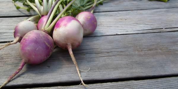 Nabo - Beneficios y deliciosas recetas