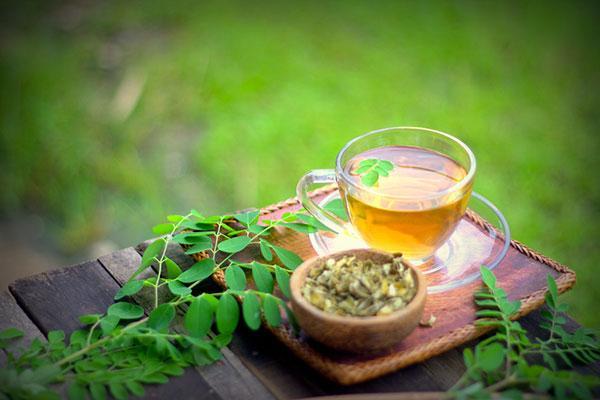 Té de Moringa: propiedades medicinales, efectos y cómo hacer