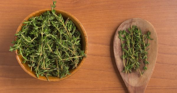 Tomillo: beneficios, usos y cómo hacer té